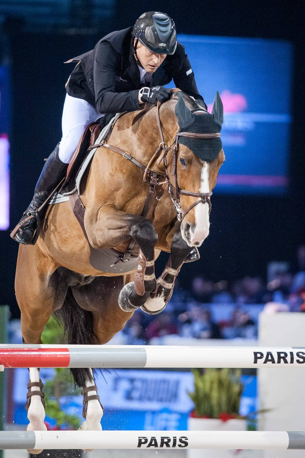 gucci masters grand prix, marc houtzager, eve jobs
