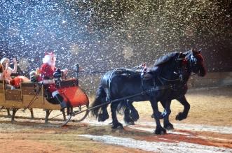 Neustädter Weihnachtsgala 2018 (Foto: Margot Schöning)