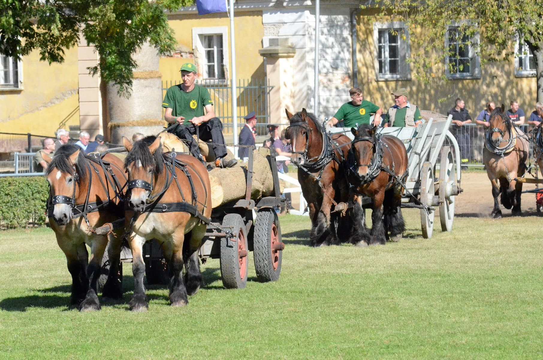 Gäste-Holzrücker-Team-Kaufmann-Altkünkendorf