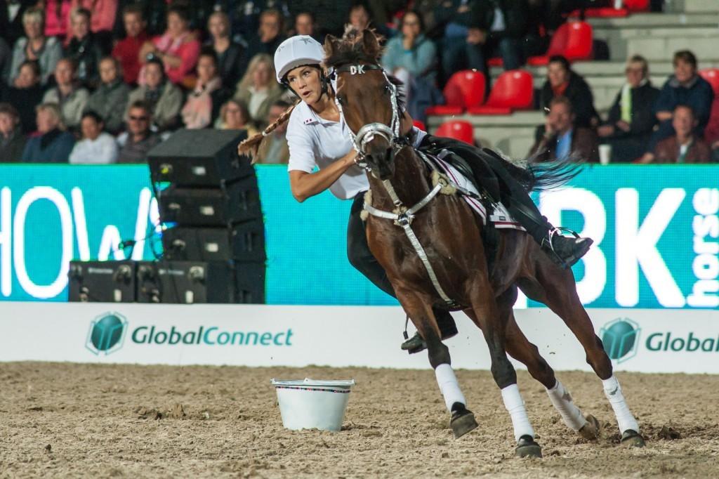 Auch um Mounted Games zu betreiben kann man ein Pony kaufen