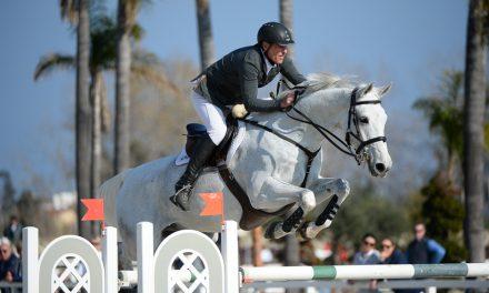 Sieg für Ralf Runge|Mediterranean Equestrian Tour