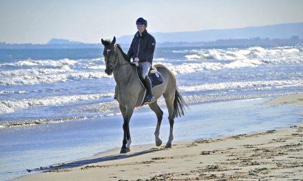 Mediterranean Equestrian Tour – Spring MET II