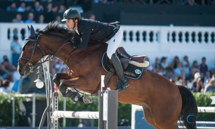 Eduardo Alvarez Aznar siegt im Weltcup von Zürich
