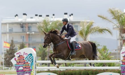MET IV – Jamie Wingrove siegt im Grand Prix