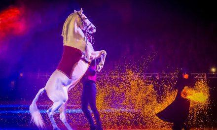Großer Preis von Sachsen – die Chemnitzer Pferdenacht