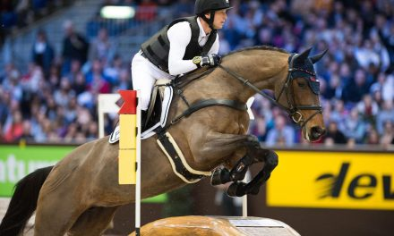 Jumping Bordeaux 2018 – DEVOUCOUX Indoor Derby – Sieg für Michael Jung