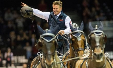 Jumping Bordeaux 2018 – FEI WORLD CUP DRIVING FINAL