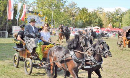 8. Ascania Pferdefestival – Leuchtturm des Pferdesports