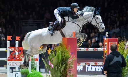 The Dutch Masters – Indoor Brabant Horse Show – der Audi-Preis