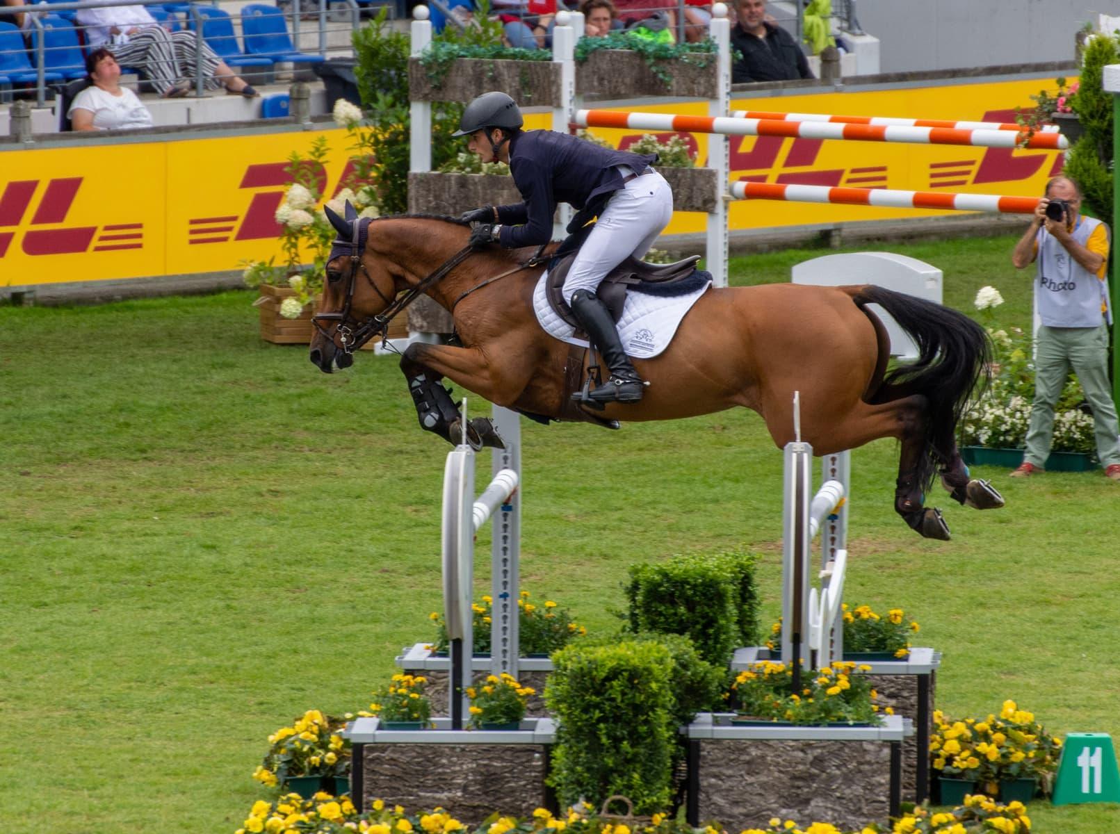 Pferdefestival Redefin 2021 –  Richard Vogel mit souveränem Sieg im Großen Preis