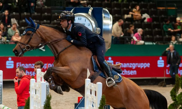 Rückblick auf die Partner Pferd 2020 – 17.Januar 2020